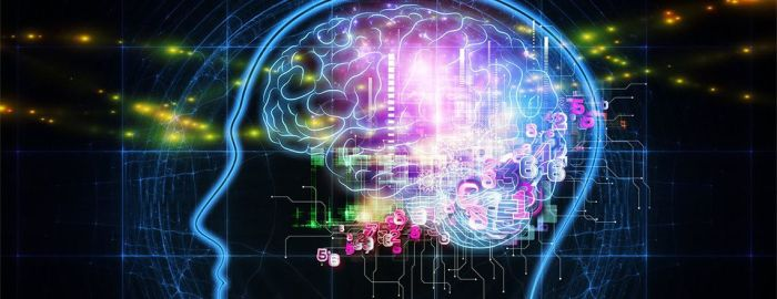 neural-network-aficionados-ersatz-event-brain-graphic-1140x440-1140x440