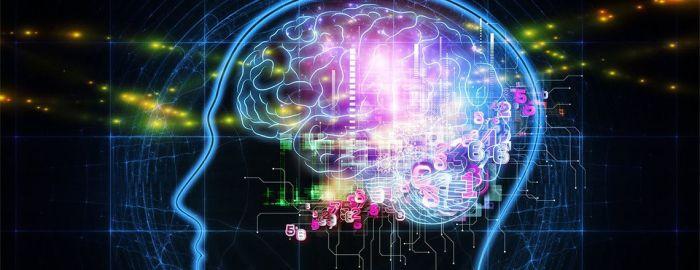 neural-network-aficionados-ersatz-event-brain-graphic-1140x440-1140x440