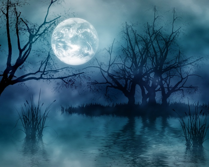 Dark-Forest-Moon-Wide-Wallpaper.jpg